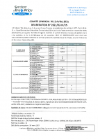 DCS 2021-02-IV-15 REVISION PPI